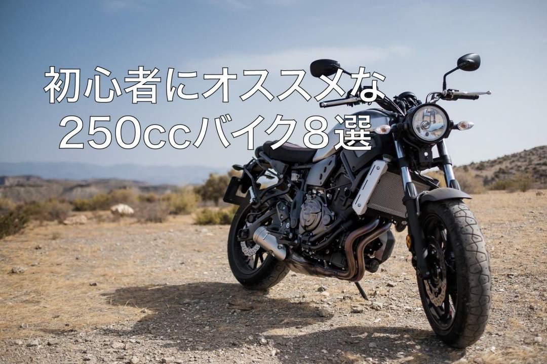 【2020年】初心者にオススメな250ccバイク8選 10